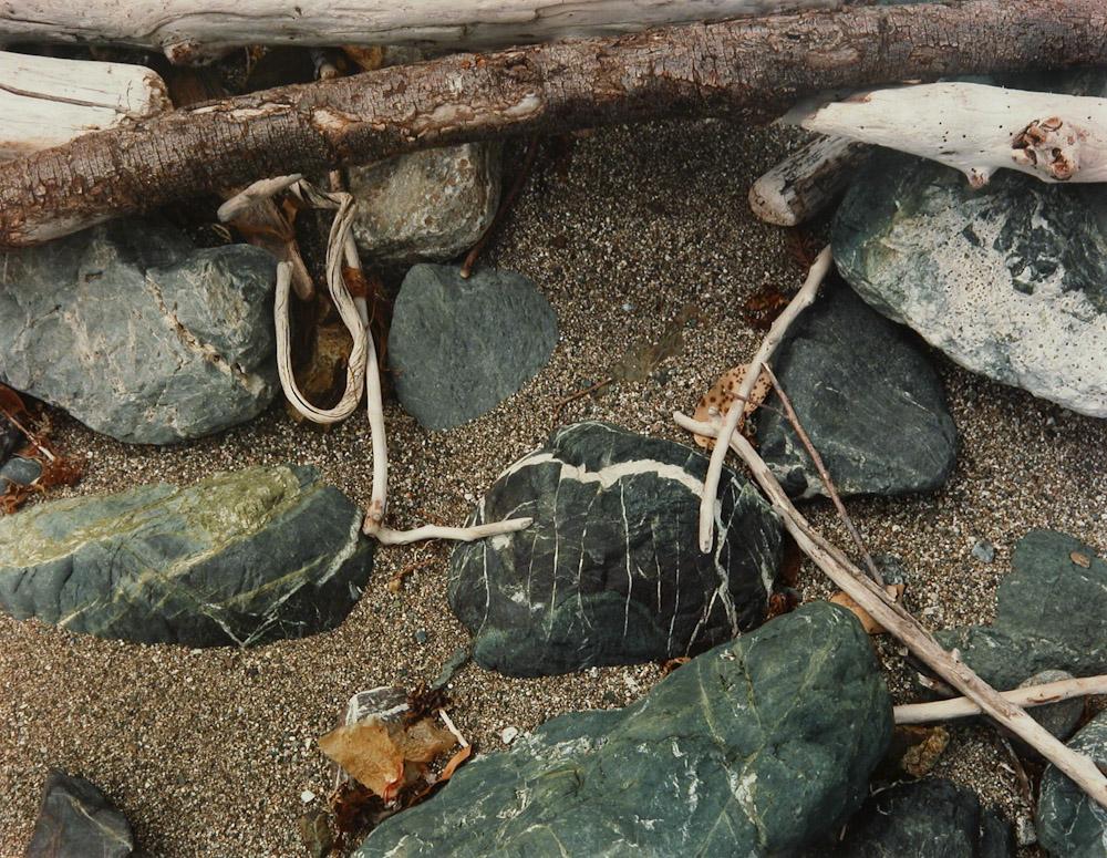 Beach Caligraphy, Big Sur