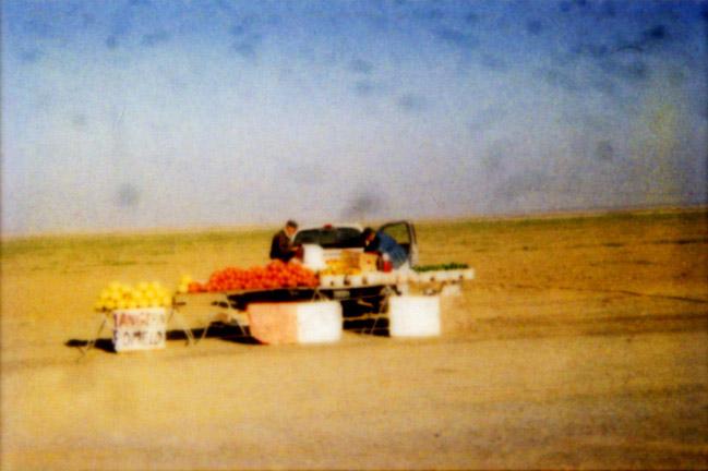 Fruit Stand, Harris R. '01
