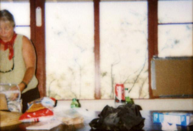 Homage to Bonnard, '02