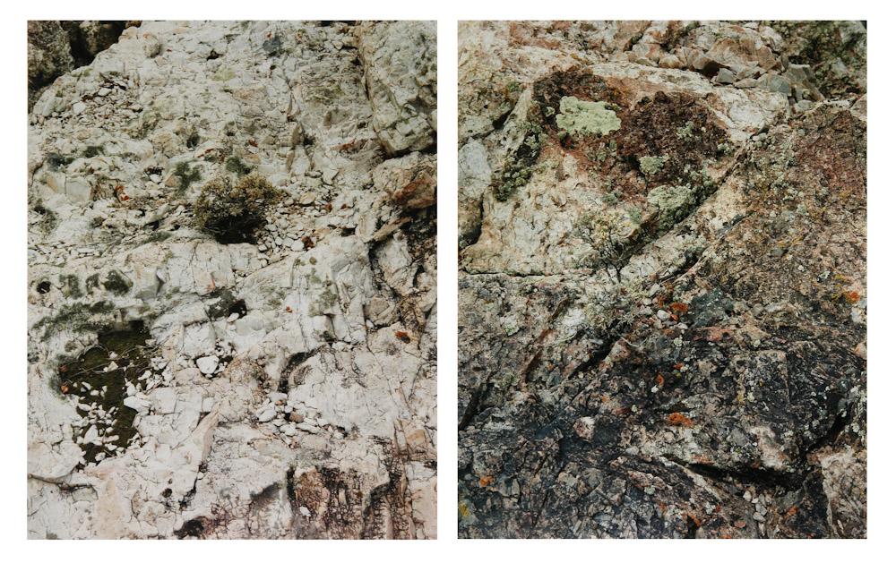 Lichen on Rock, Desolation Wilderness
