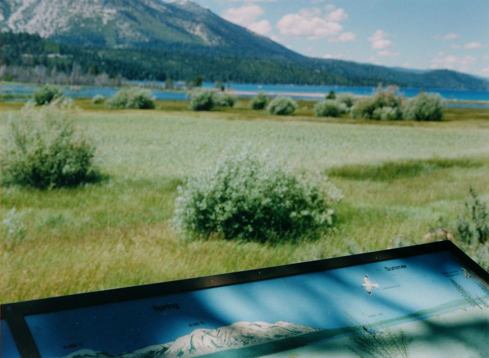 Mapped Landscape, Tahoe