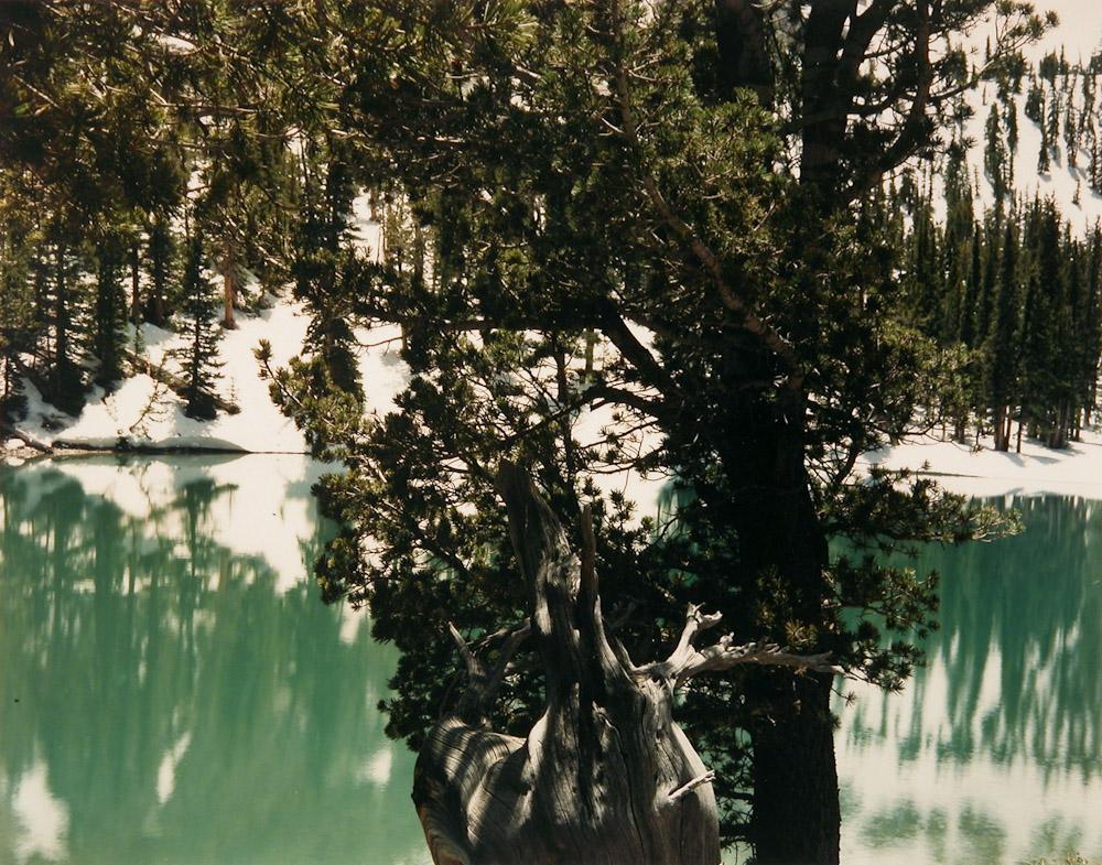 Siesta Lake, Great Basin